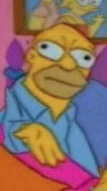 Homer - Bug